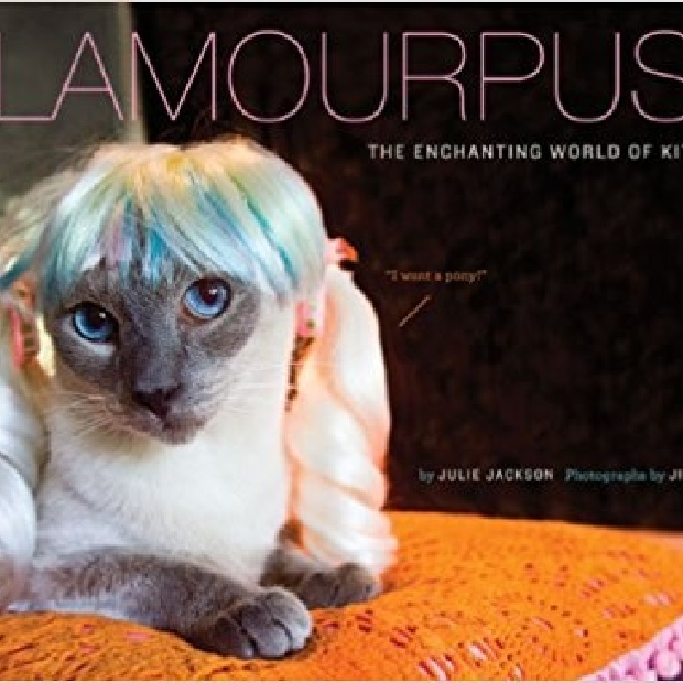 The front cover of Glamourpuss: The Enchanting World of Kitty Wigs